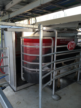Central Silo Systems Dairy Robotic Milk System